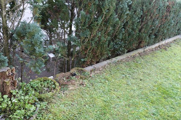 Gartenplanung11